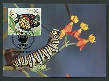 MEXICO MK SCHMETTERLINGE MONARCHFALTER MONRACH BUTTERFLY MAXIMUM CARD MC CM m112