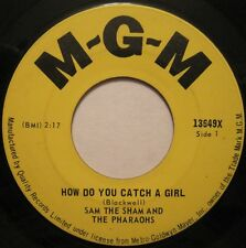 SAM THE SHAM AND THE PHARAOHS How do You Catch a Girl 45 CDN 60s Rock oop L@@K