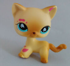 Littlest Pet Shop Cat Collection Child Girl Boy Figure Toy Loose Cute lps106MN