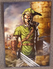 The Legend Of Zelda Link Glossy Print 11 x 17 In Hard Plastic Sleeve