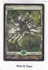 MTG: Zendikar: Forest #249 - Full Art Land