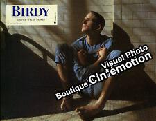 10 Photos + Synopsis Cinéma 21x27cm (1984) BIRDY Alan Parker - Matthew Modine TB