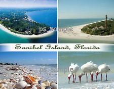Florida - SANIBEL ISLAND Collage - Travel Souvenir Fridge Magnet