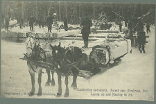 Postcard Lumbering Operations Forest near Pembroke Laying Up  Hauling to Ice