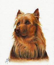 NEW Original Oil Art AUSTRALIAN TERRIER Portrait Painting DOG PUPPY Signed BROWN