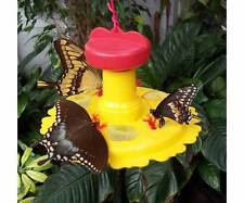 Butterfly Nectar & Fruit Feeder for Garden Butterflies 6oz