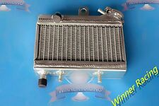 ALUMINUM ALLOY RADIATOR FOR POLINI MINIMOTO POCKET BIKE, PLEASE CHECK PICTURES
