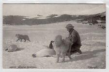 JOYCE: Shackleton 1908 Antarctic Expedition postcard (C6246).