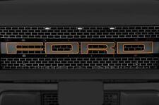 Ford F150 SVT Raptor 2010-14 Graphics Vinyl Decal Grille Letter Outlines ORANGE