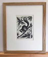 Agnes Miller-Parker - original 1930's  squirrel print mounted & framed