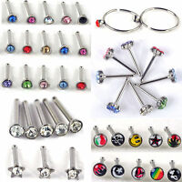 40/60 Wholesale Body Jewelry Mix Lots Nose Stud Piercing Display Earrings CHIC