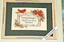 Cardinal Calling Card Cross Stitch Kit Holiday Picture Weekender  BFab
