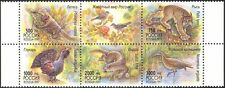 Russia 1997 Wildlife/Lynx/Squirrel/Otter/Birds/Cats/Nature/Animals 5v blk b1712