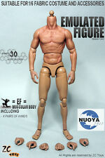 "12"" ZC TOYS Male Muscular Body Figure Doll Thin Thigh For  1/6 Scale Man Head"