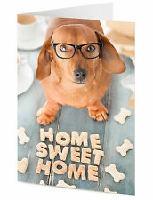 Cute Dachshund sausage dog arranges treats to say HOME SWEET HOME card