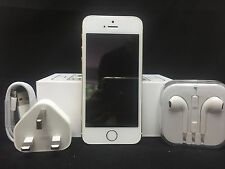NEW Apple iPhone 5s - 16GB - Gold (Unlocked) Smartphone