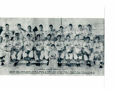 1947 WINSTON SALEM  CARDINALS 8X10 TEAM PHOTO 18 YR OLD SLUGGER STEVE BILKO
