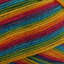 WYS Aire Valley DK Yarn Wool 100g - Rum Paradise (822)