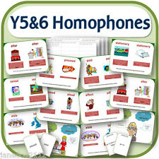 KS2 Y5 & 6 HOMOPHONES SPELLING SPaG IWB, worksheets, games teaching resources CD