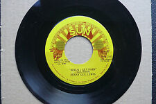 "7"" Jerry Lee Lewis - When I Get Paid - US SUN"