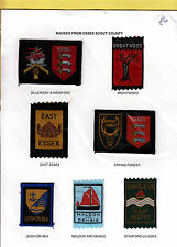 Boy Scout Badges from ESSEX County x 7 inc Ext EPPING FOREST
