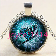 Anime Fairy Tail Cabochon Tibetan silver Glass Chain Pendant Necklace #2730