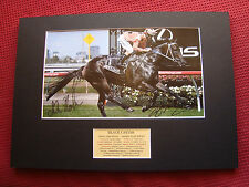 BLACK CAVIAR- PETER MOODY & LUKE NOLEN PERSONALLY SIGNED PHOTO MOUNT DISPLAY-COA