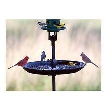 Brome Bird Care Seed Buster Seed Tray and Catcher (1020) Eliminates Ground Mess