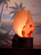 """Melo Melo Seashell Lamp 8"""" with wooden Stand Beautiful Unique Beach Coastal"""