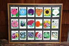 Nice Collection of 18 Vintage Flower Seed Packets in Framed Garden Art Display