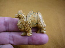 (Y-CAM-564) little tan CAMEL camels gemstone STONE carving FIGURINE dromedary