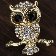 Hot Fashion White Crystal Owl Design Pin Gold Plated Women Brooch Jewelry Gift