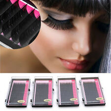 Mink Blink Lashes Lash 0.07mm  D Curl Tray Eyelash Extensions 14mm  #bai