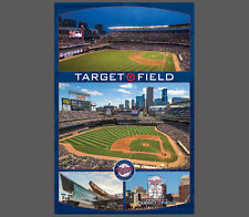 Minnesota Twins TARGET FIELD CELEBRATION MLB Baseball Gameday Wall POSTER
