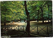 Italie - cpsm - GARGANO - Foresta Umbra - Zone de Pic-Nic