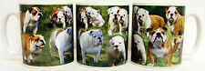 English Bulldog Mug Ceramic Collage British Bulldog Scenes Mug Decorated in UK