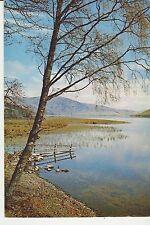 Vintage unused Arthur Dixon Postcard St Marys Loch, Selkirkshire, 3477
