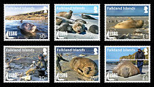 Falkland Is.2015 Elephant Seals Research Group 6v set MNH