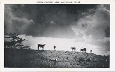 Huntsville TX * Cattle Country  ca. 1940 * Walker Co.