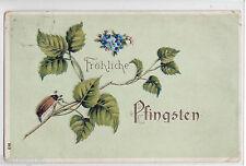 Fröhliche Pfingsten Maikäfer  Präge AK 1909