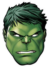 Hulk Marvel The Avengers Single Fun CARD Party Face Mask - Superhero Banner