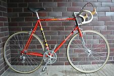 VINTAGE Raleigh Rapide Team TI road bike !! reynolds 531 !! very rare !