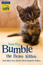 Bumble the Brave Kitten: In Association with Cats Protection by Samantha Hay ...