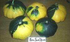 Green/Yellow Variegated Patty Pan Squash- FOR BAKING, FRYING & STUFFING!