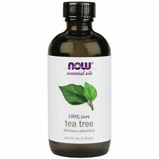 100% Pure NOW Foods Tea Tree Essential Oil 4oz. Bottle for Burners & Diffusers!
