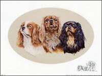 CAVALIER KING CHARLES ENGLISH TOY SPANIEL CKCS DOG ART PRINT - all three colours