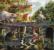 Central African Republic 2015 MNH Oriental Cats 4v M/S Pets Donskoy Shorthair