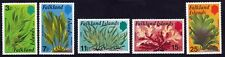 FALKLAND ISLANDS 1979 SEAWEEDS 5v set MNH @S4250