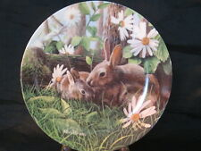 "1987 Edwin Knowles Limited Edition ""The Rabbit"" by Kevin Daniel Collector Plate"