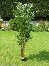 Artificial Plants - Large 5ft Bamboo Artificial Tree - 1.5m Trees in Pot